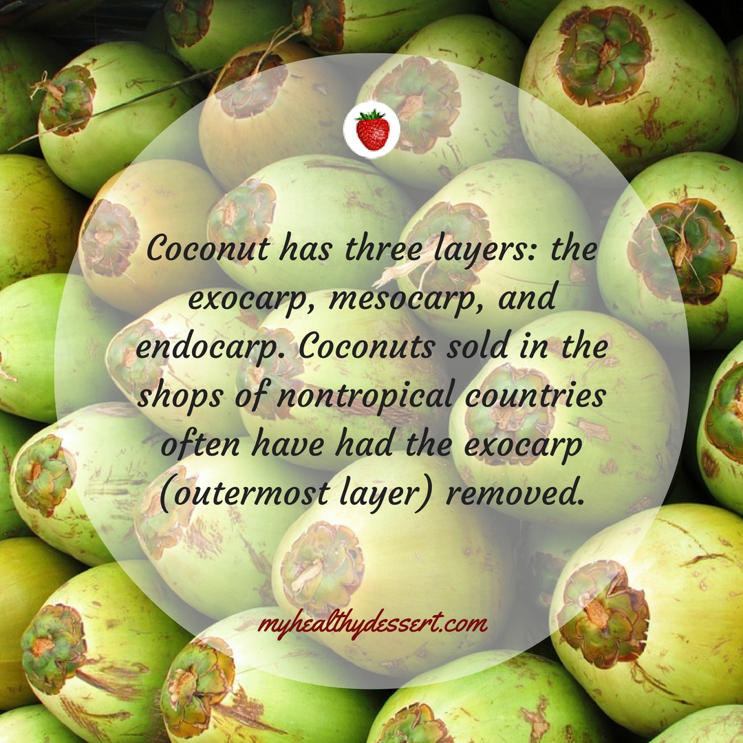 10 Interesting Facts About Coconuts - My Healthy Dessert - photo#29