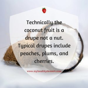 the coconut is a drupe