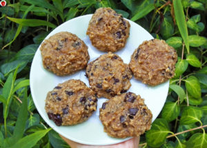 4-Ingredient Banana Peanut Butter Chocolate Chip Cookies