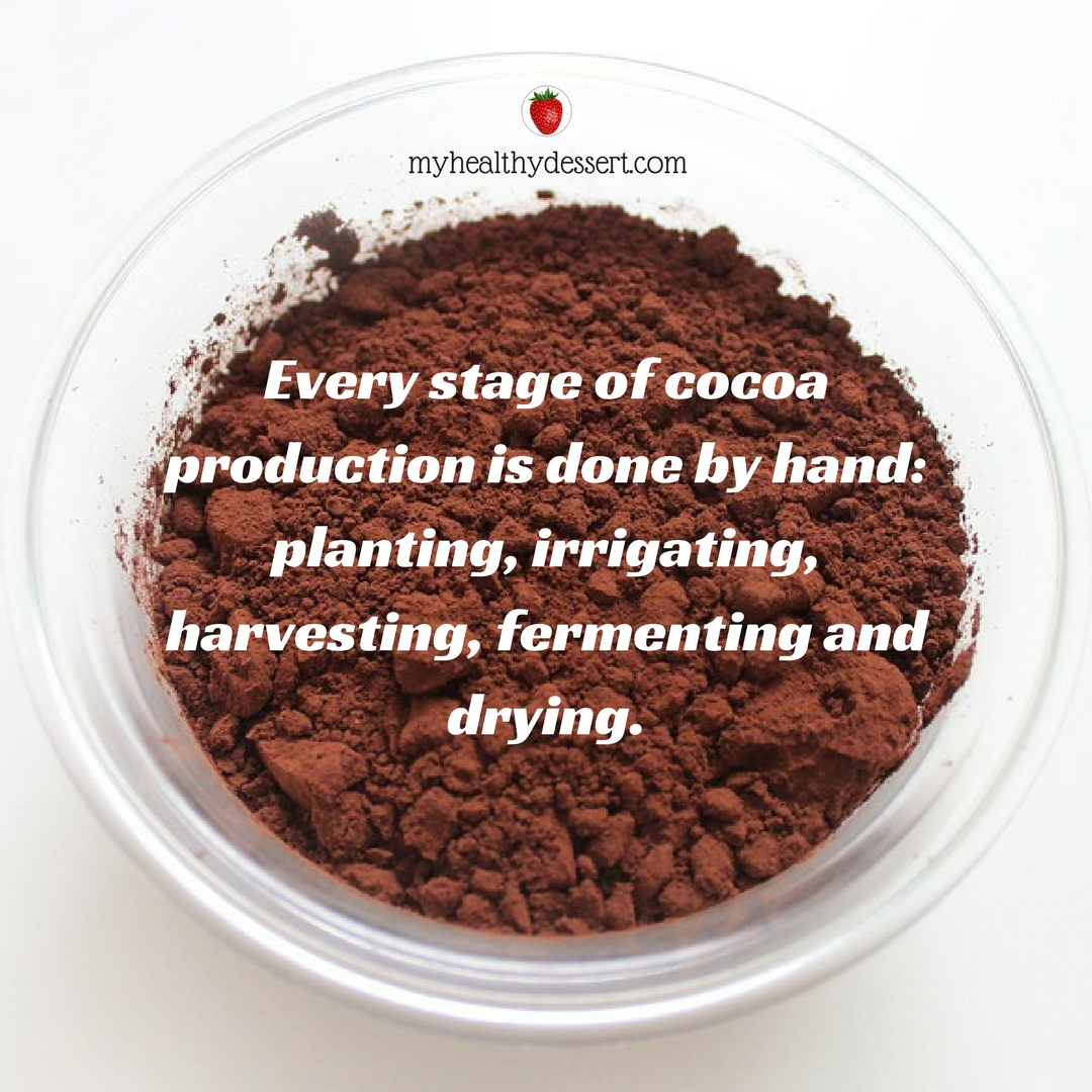 facts about chocolate Chocolate has a really pleasant flavor, ideal on its own or combined with many other foods and desserts many people feel guilty after eating chocolate without realizing that a few ounces a week can provide their body with healthy nutrients keep reading to discover 20 facts about chocolate a .