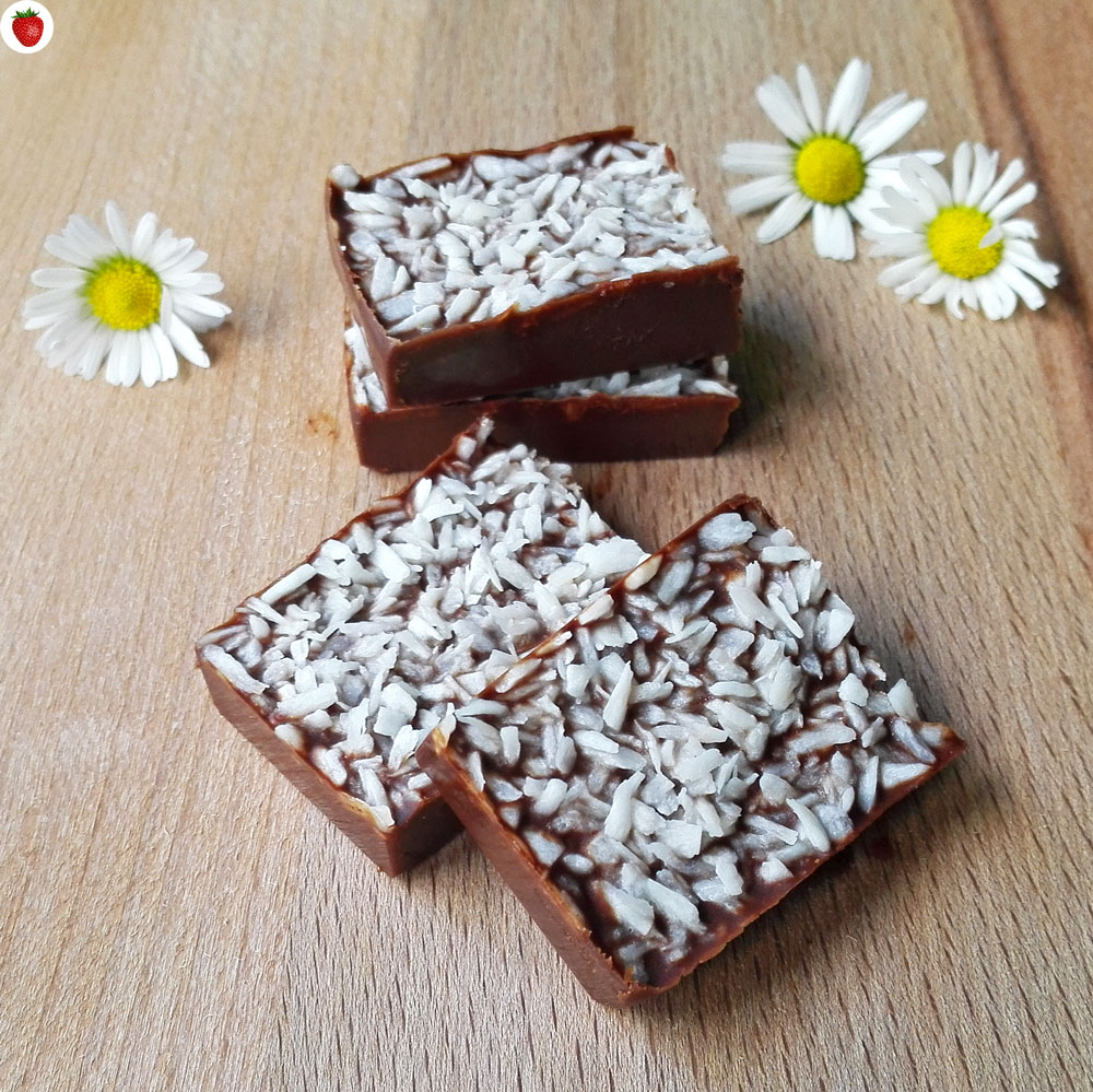 2-Ingredient Melt-In-Your-Mouth Raw Vegan Coconut Chocolate Fudge