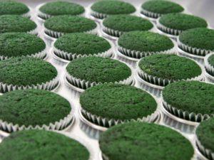 Spirulina cupcakes